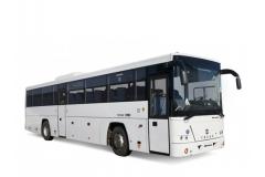 Междугородный автобус Голаз Вояж (ЛИАЗ-525110), базовая комплектация, мест 53/60